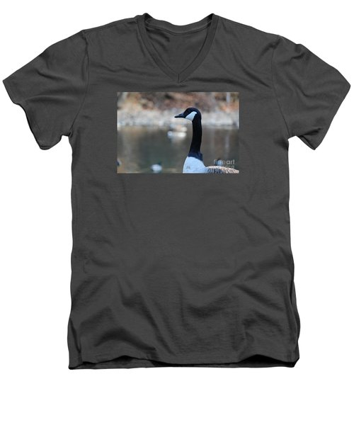 Men's V-Neck T-Shirt featuring the photograph The Gander by David Jackson