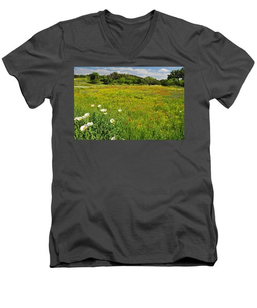 The Glory Of Spring Men's V-Neck T-Shirt