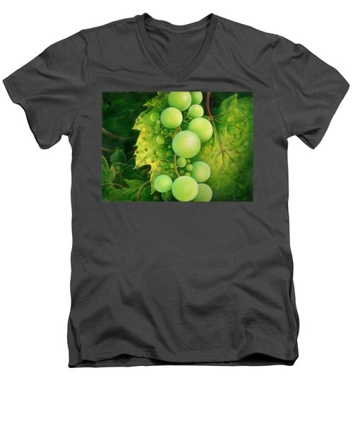 The Grapes Men's V-Neck T-Shirt