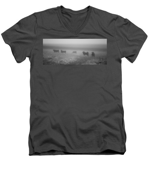 The Graze Men's V-Neck T-Shirt