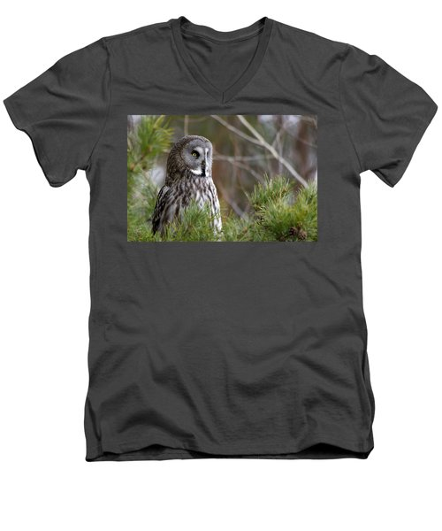 The Great Grey Owl Men's V-Neck T-Shirt by Torbjorn Swenelius