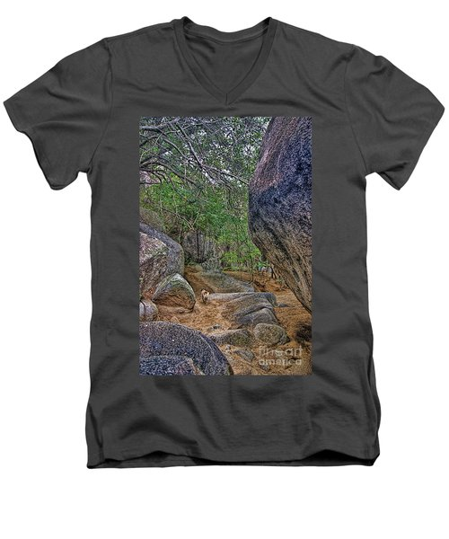 Men's V-Neck T-Shirt featuring the photograph The Guide by Olga Hamilton