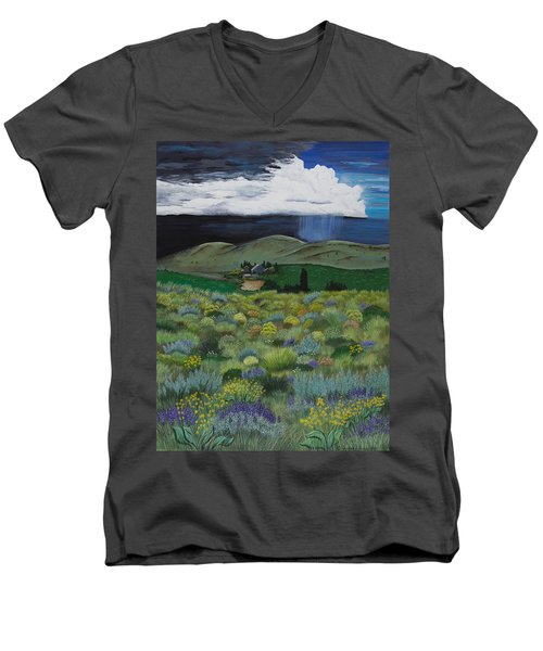 The High Desert Storm Men's V-Neck T-Shirt