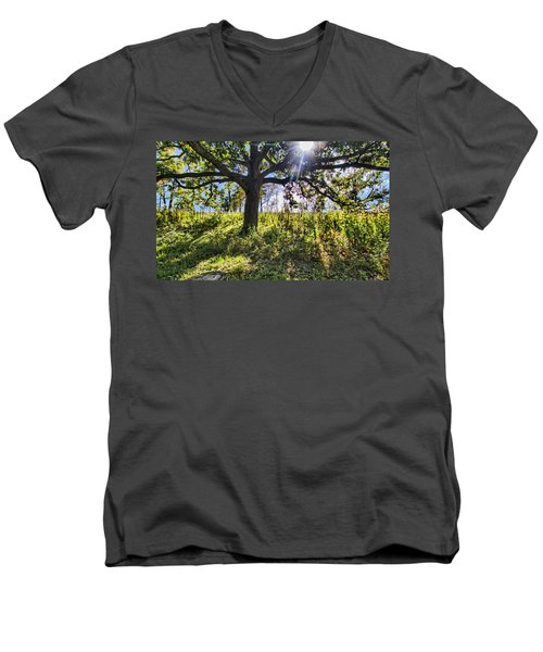 The Learning Tree Men's V-Neck T-Shirt
