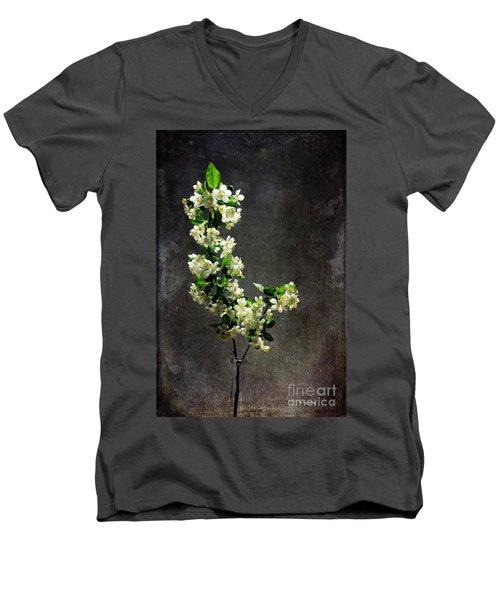The Light Season Men's V-Neck T-Shirt