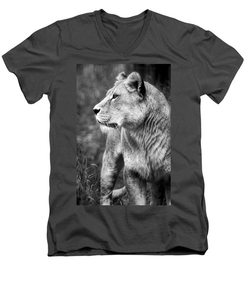 The Lioness Men's V-Neck T-Shirt