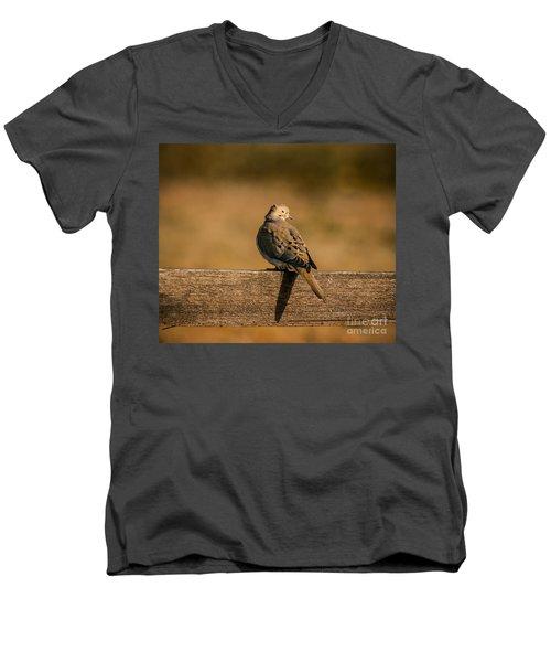 The Morning Dove Men's V-Neck T-Shirt by Robert Frederick