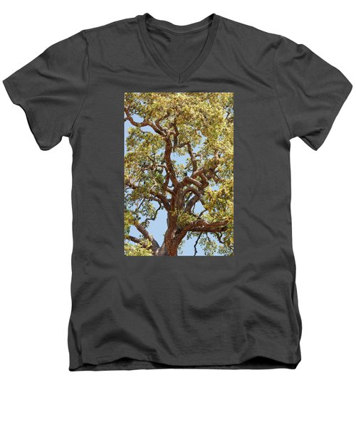 The Old Tree Men's V-Neck T-Shirt by Connie Fox