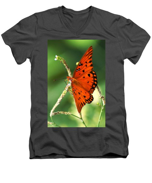 The Passion Butterfly Men's V-Neck T-Shirt