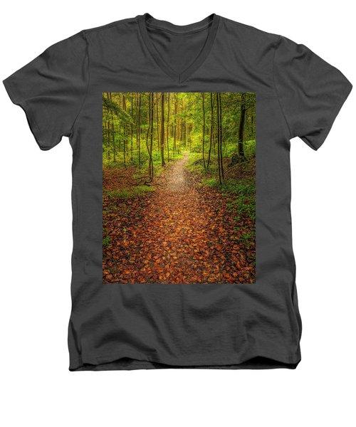 The Path Men's V-Neck T-Shirt by Maciej Markiewicz
