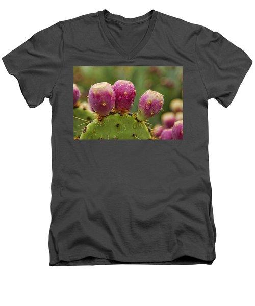 The Prickly Pear  Men's V-Neck T-Shirt by Saija  Lehtonen