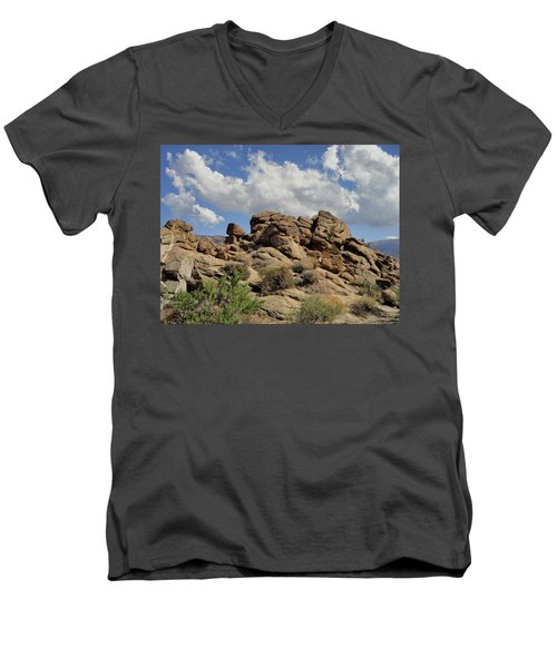 The Rock Garden Men's V-Neck T-Shirt by Michael Pickett