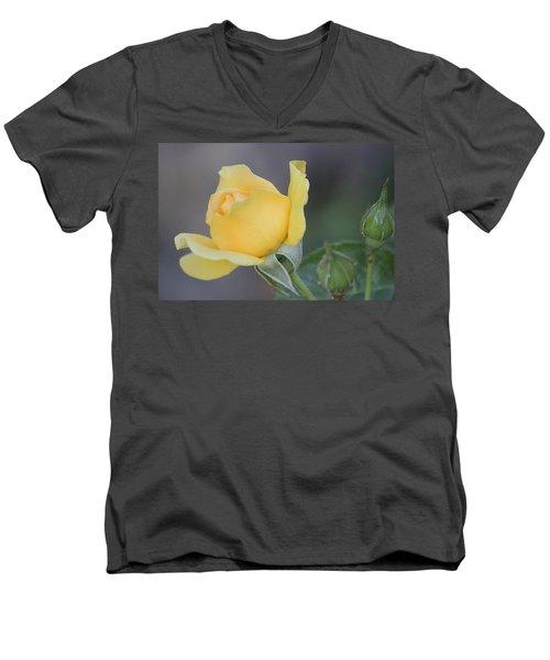 The Unfolding Men's V-Neck T-Shirt