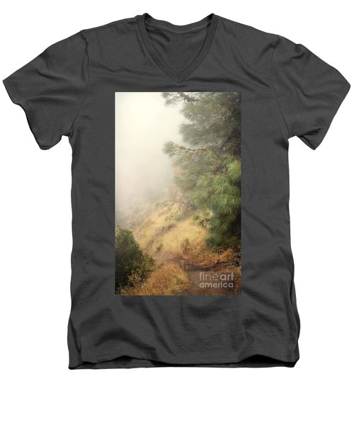 Men's V-Neck T-Shirt featuring the photograph There And Back Again 2 by Ellen Cotton