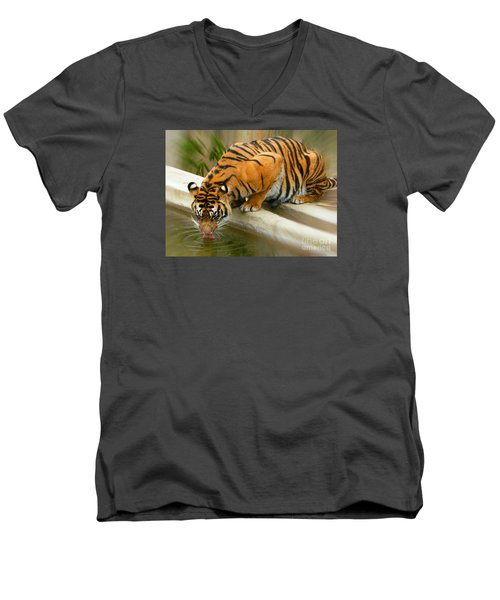 Thirsty Sumatran Tiger Men's V-Neck T-Shirt