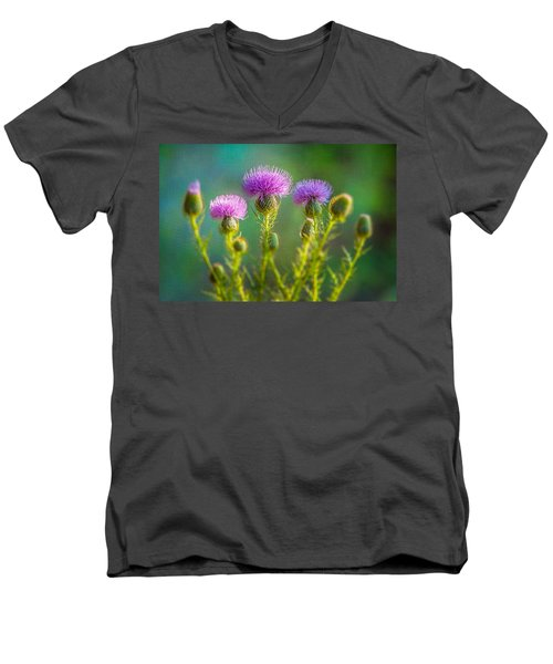Thistle In The Sun Men's V-Neck T-Shirt