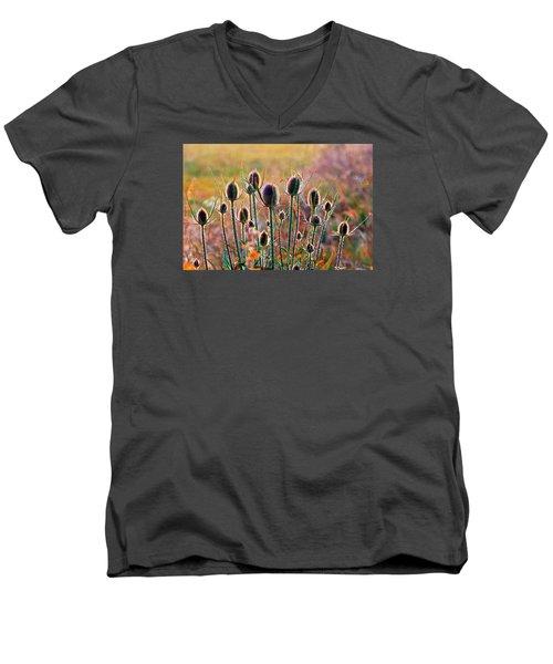 Thistles With Sunset Light Men's V-Neck T-Shirt