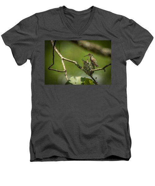 Three Beaks Men's V-Neck T-Shirt