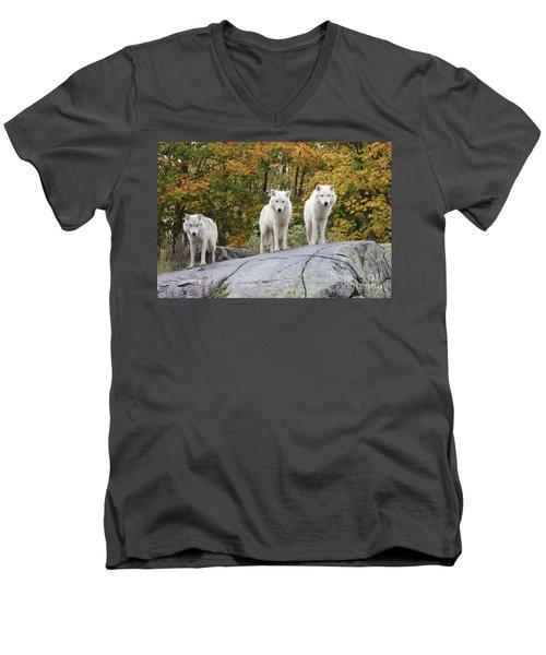 Three Looking At Me Men's V-Neck T-Shirt