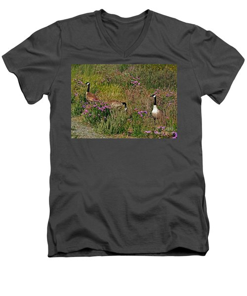 Men's V-Neck T-Shirt featuring the photograph Three Quiet Canada Geese by Susan Wiedmann