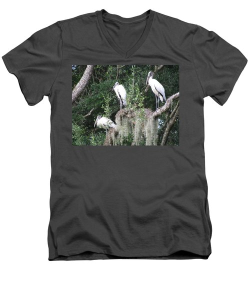 Three Wood Storks Men's V-Neck T-Shirt