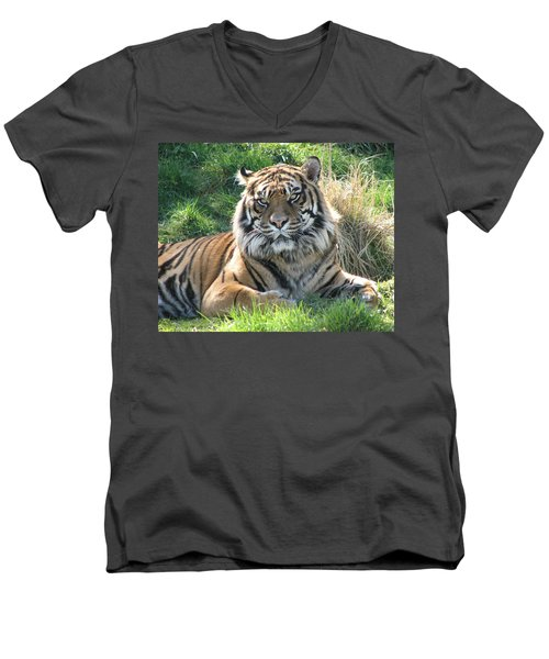 Tiger 2 Men's V-Neck T-Shirt