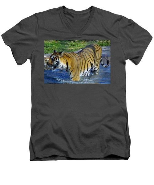 Tiger 4 Men's V-Neck T-Shirt