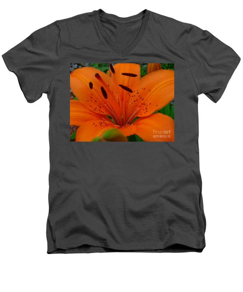 Men's V-Neck T-Shirt featuring the photograph Tiger Lily by Bianca Nadeau