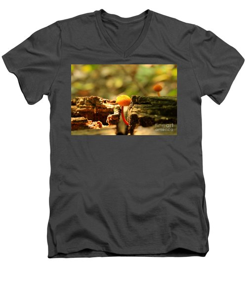 Tiny Mushroom Men's V-Neck T-Shirt by Melissa Petrey