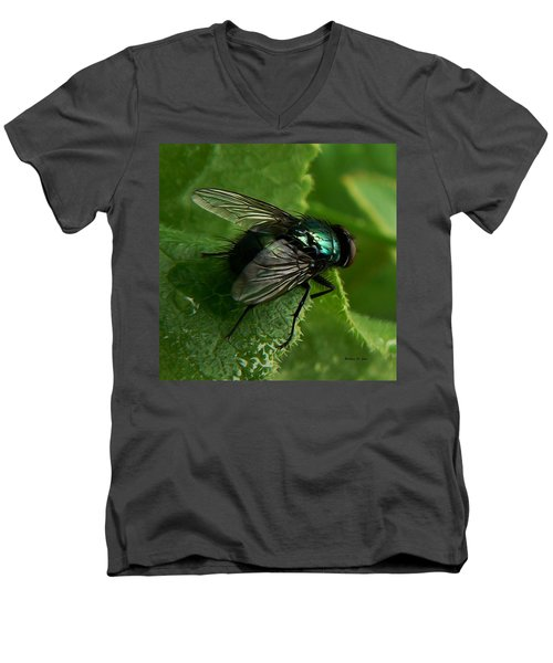 To Be The Fly On The Salad Greens Men's V-Neck T-Shirt