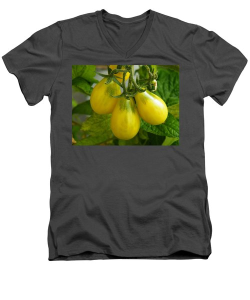 Tomato Triptych Men's V-Neck T-Shirt
