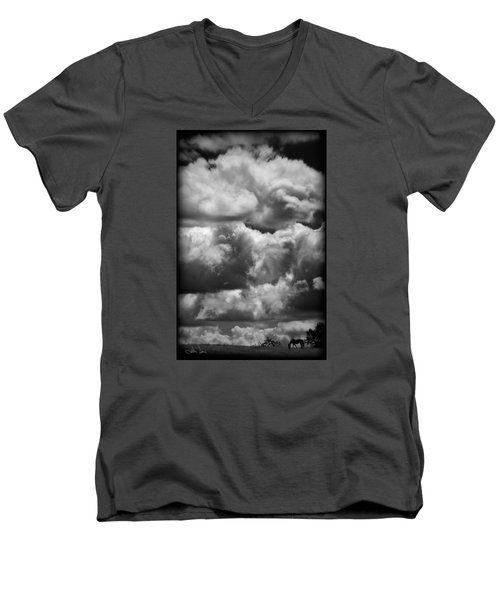 Men's V-Neck T-Shirt featuring the photograph Top Of The World by Joan Davis