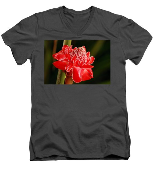 Torch Ginger Men's V-Neck T-Shirt