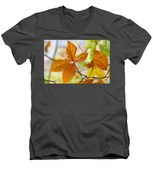 Men's V-Neck T-Shirt featuring the photograph Touch Of Gold by Jan Amiss Photography