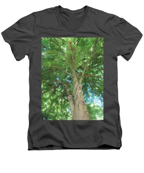 Men's V-Neck T-Shirt featuring the photograph Towering Tree by Pema Hou