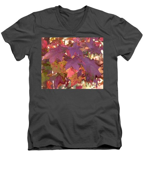 Men's V-Neck T-Shirt featuring the photograph Traces Of Fall by Andrea Anderegg