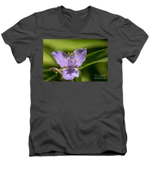 Tradescantia Virginiana Men's V-Neck T-Shirt