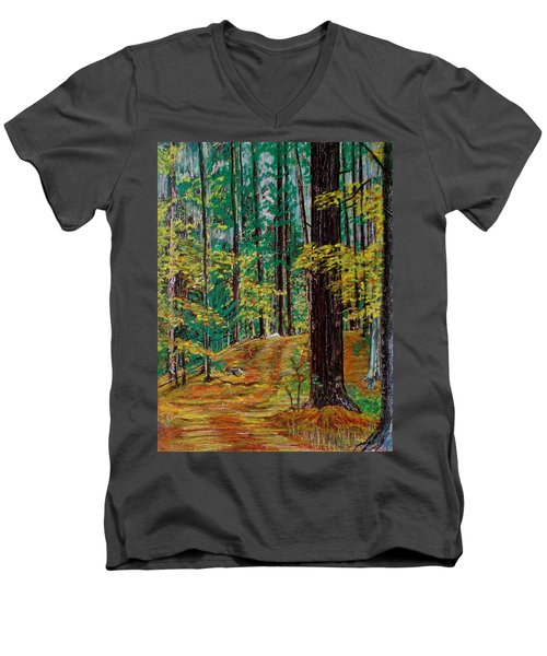 Trail At Wason Pond Men's V-Neck T-Shirt by Sean Connolly