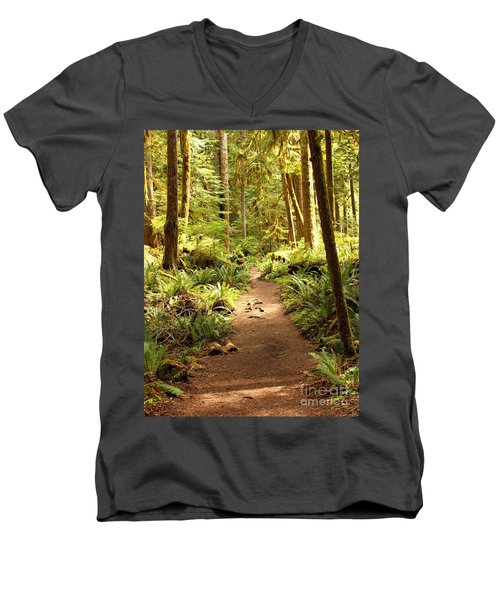 Trail Through The Rainforest Men's V-Neck T-Shirt