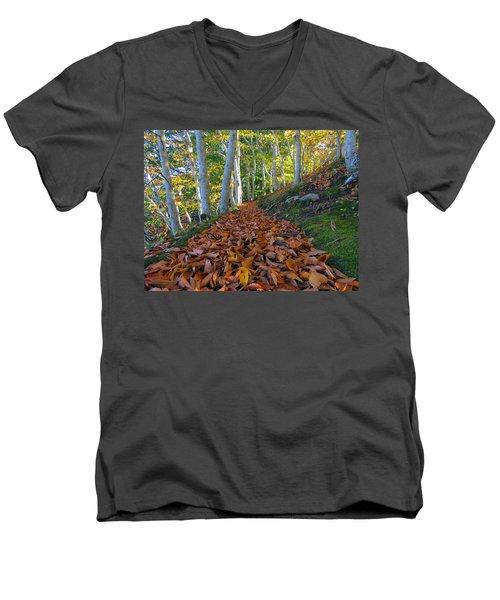 Trailblazing Men's V-Neck T-Shirt by Dianne Cowen