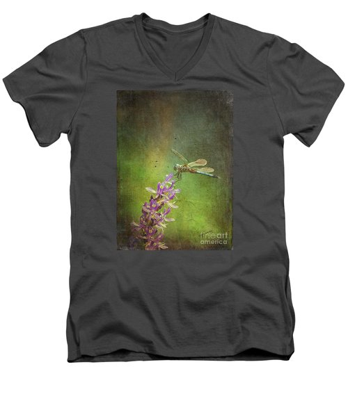 Treading Lightly Men's V-Neck T-Shirt by Patricia Griffin Brett