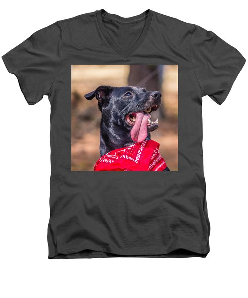 Men's V-Neck T-Shirt featuring the photograph Treat Please by Rob Sellers
