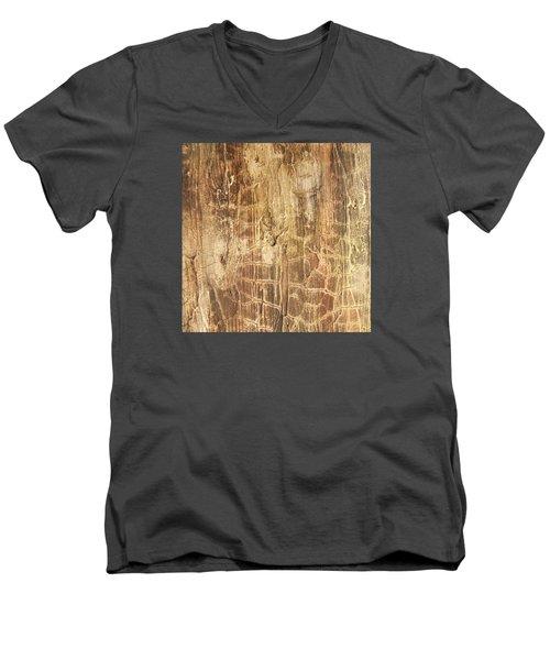 Tree Bark Men's V-Neck T-Shirt by Alan Casadei