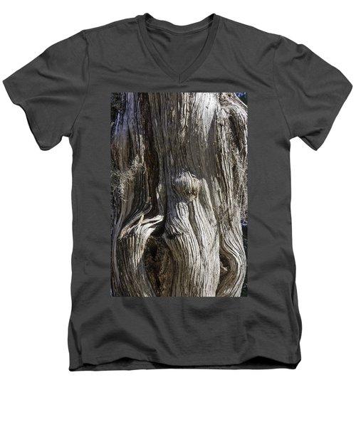 Tree Bark No. 3 Men's V-Neck T-Shirt by Lynn Palmer