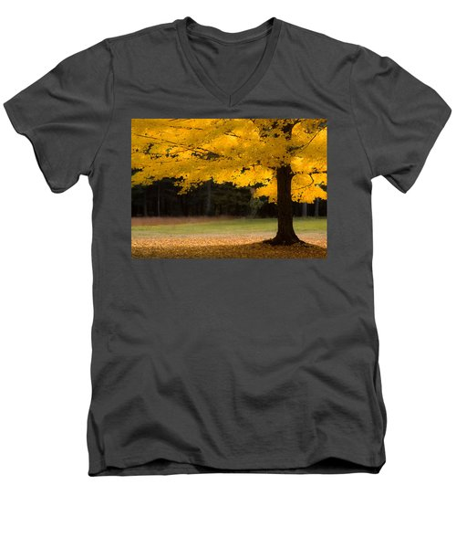 Tree Canopy Glowing In The Morning Sun Men's V-Neck T-Shirt