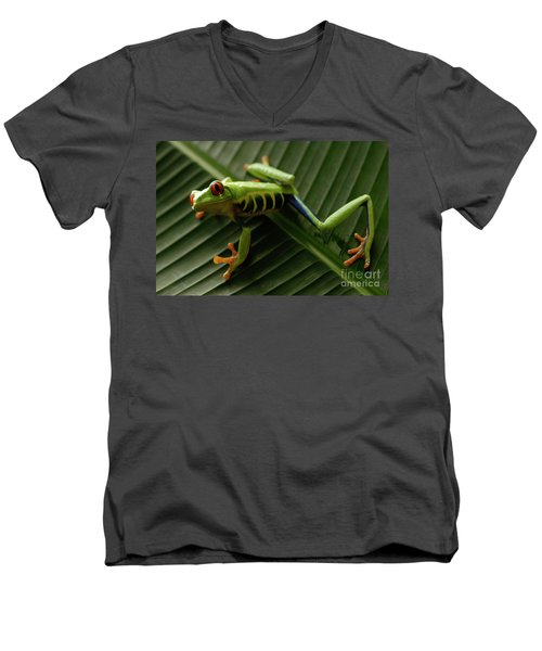 Tree Frog 16 Men's V-Neck T-Shirt