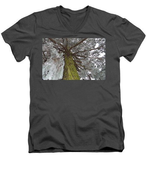 Men's V-Neck T-Shirt featuring the photograph Tree In Winter by Felicia Tica