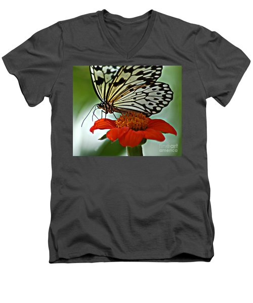 Tree Nymph Closeup Men's V-Neck T-Shirt