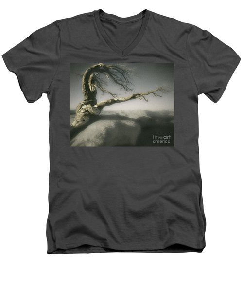 Tree Of Ages Men's V-Neck T-Shirt