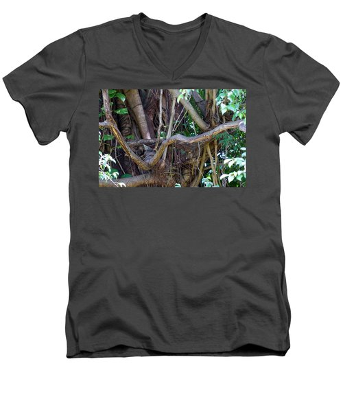 Men's V-Neck T-Shirt featuring the photograph Tree by Rafael Salazar